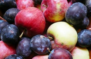 Dealing with apple and plum gluts