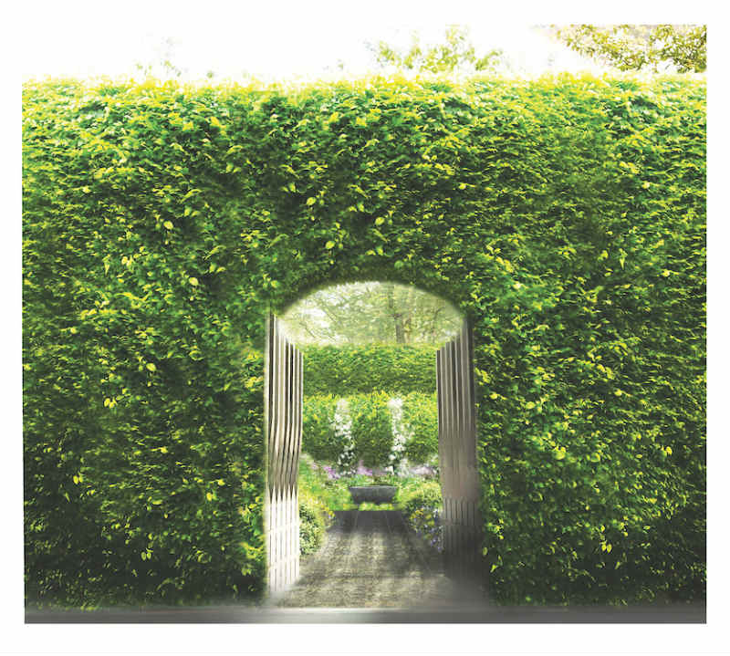Linklaters Garden for Maggie's