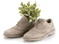 Concrete brogue shoes planter. Picture; Smithers of Stanford
