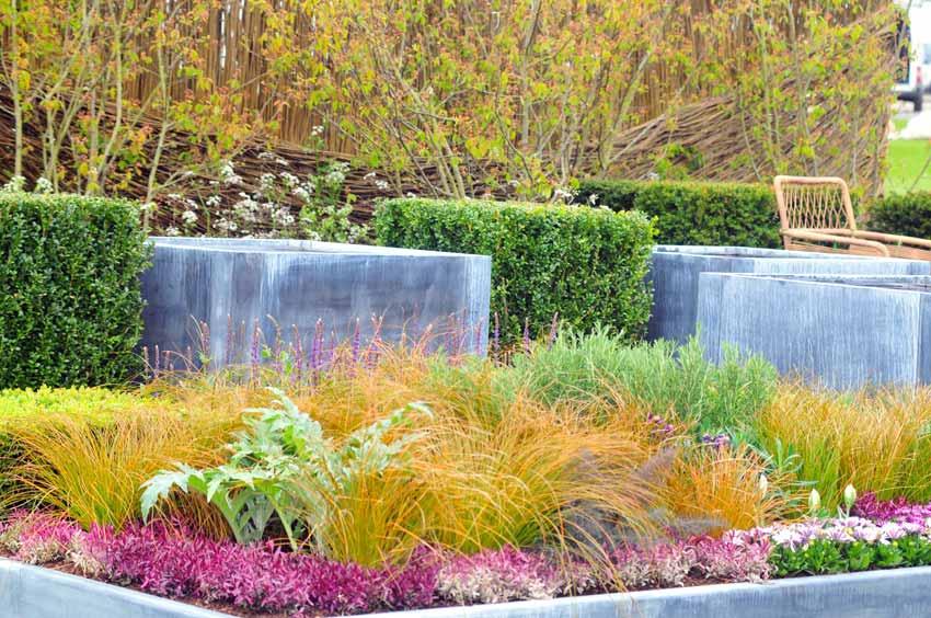 Win Turn Soil Troubles Into A Harrogate Show Garden